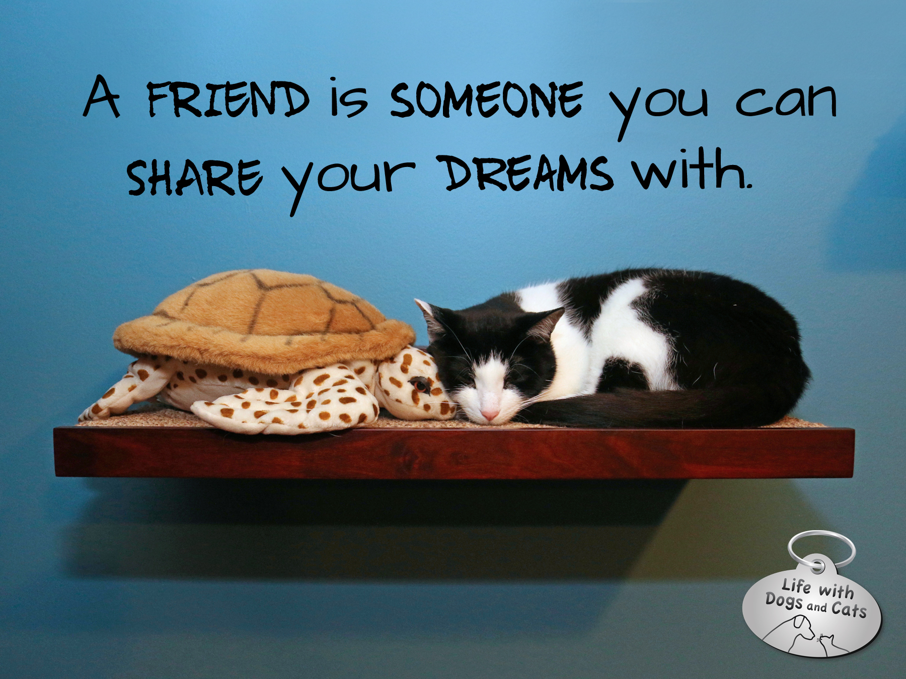 A friend is someone you can share your dreams with.