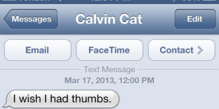 Text from cat: Inside, outside