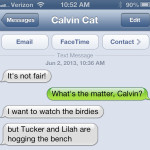 Text from cat: Benched
