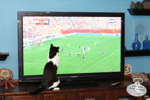 Calvin helps #TeamUSA win the Women's World Cup