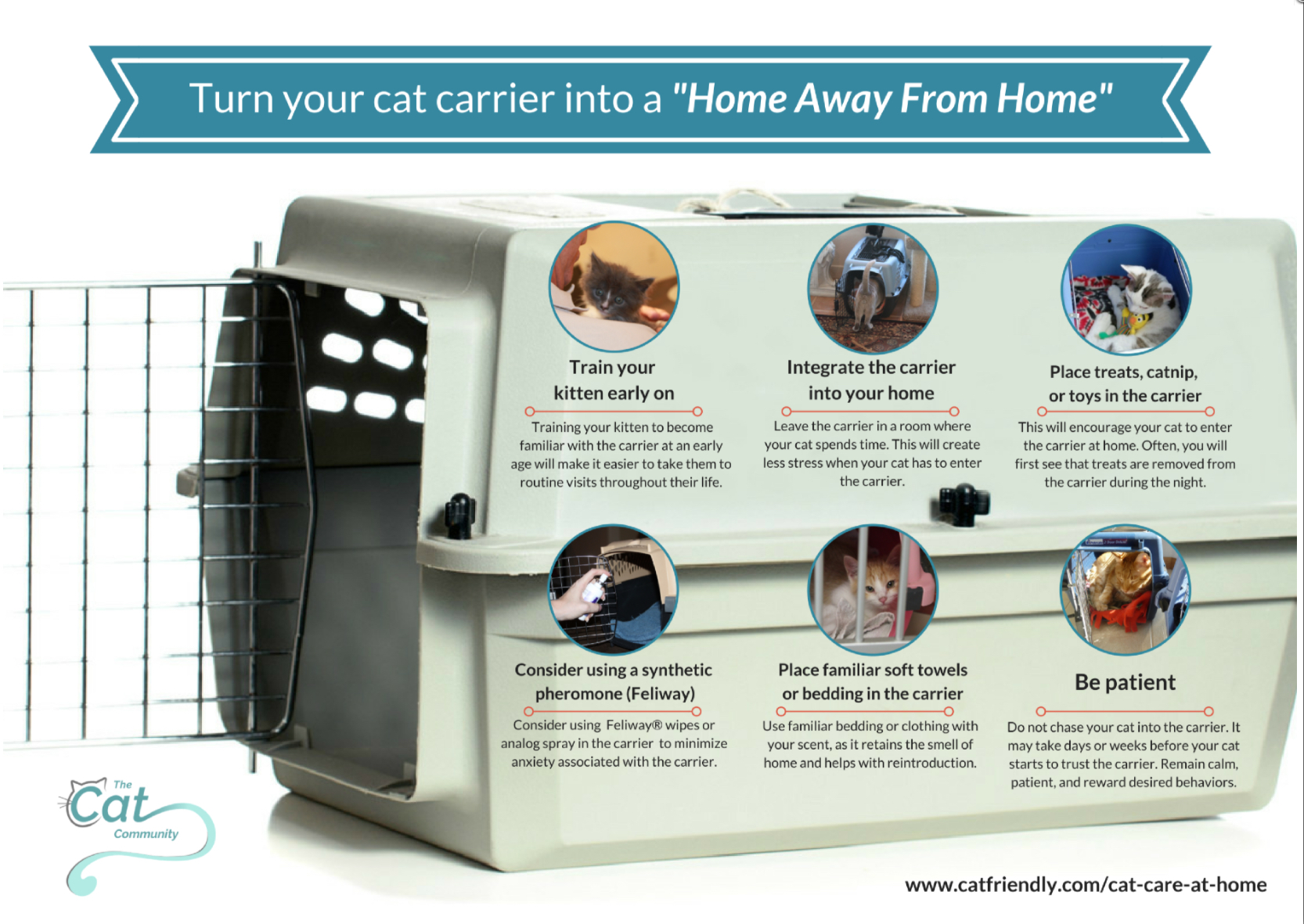 How to make your carrier a home away from home #Cat2VetDay