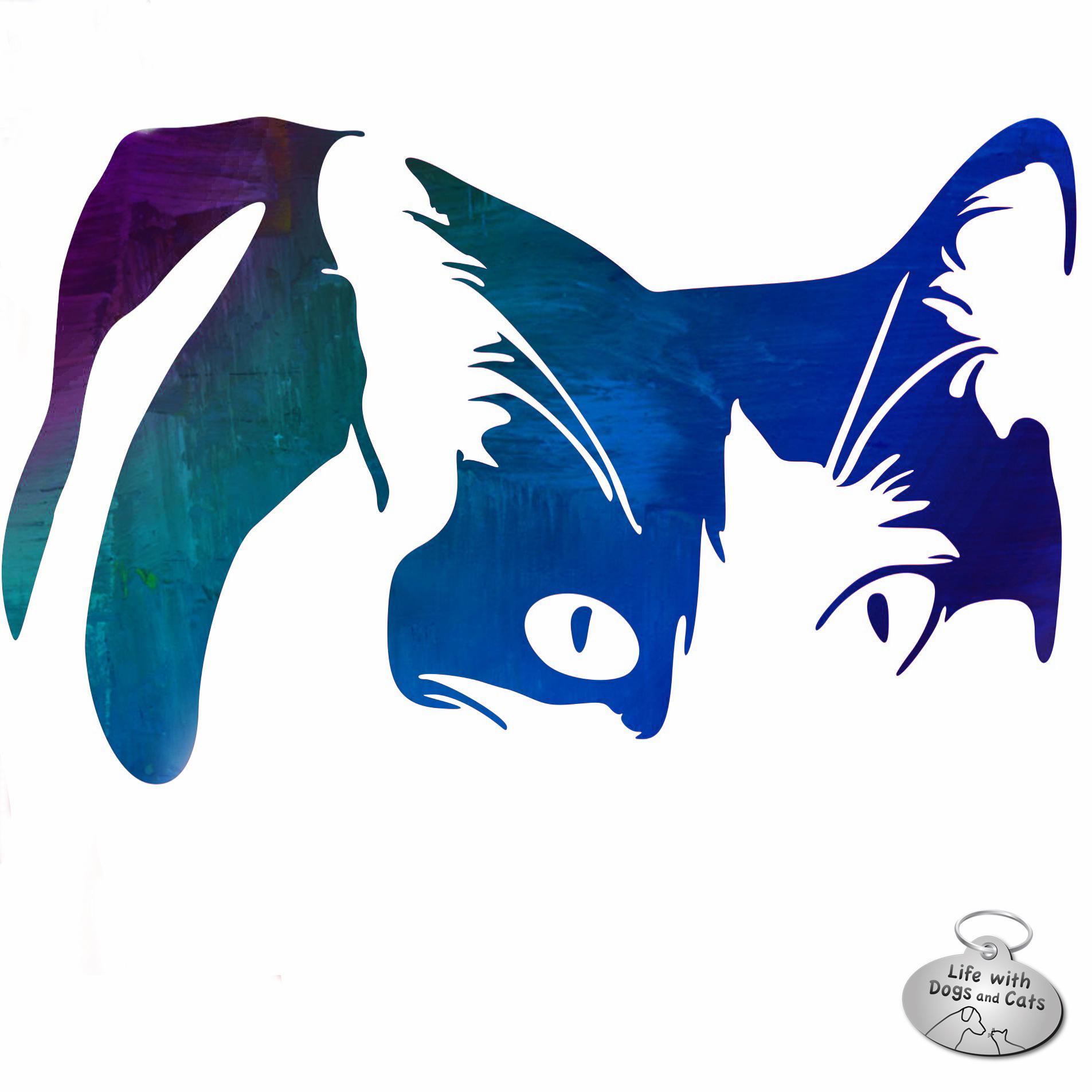 Elsa Clair cat art