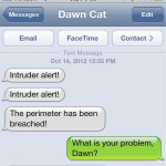 Text from Cat: Intruder Alert