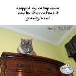 Haiku by Cat: Evil