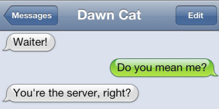 Text from Cat: Waiting for dinner