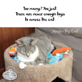 Haiku by Cat: Too many? You jest. / There are never enough toys / to amuse the cat