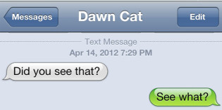 Text from Cat: The Light of Dawn