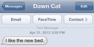 Text from Cat: Sock it to me