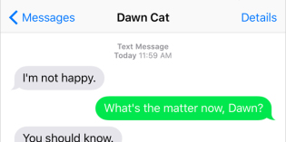 Text from Cat: All of the above