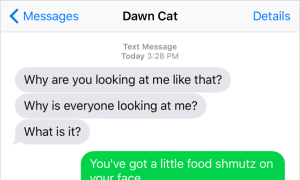 Text from Cat: Facing it