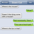 Text from Cat: Where's the mouse? Text from me: I use a touchpad. Text from Cat: Where's the fun in that?