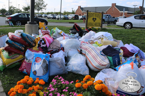 The pile of donations outside the building was large, and growing larger by the minute as people continued to drop off needed items while I was there.