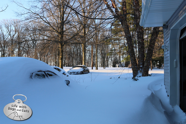What our driveway looked like, from the garage, after the blizzard