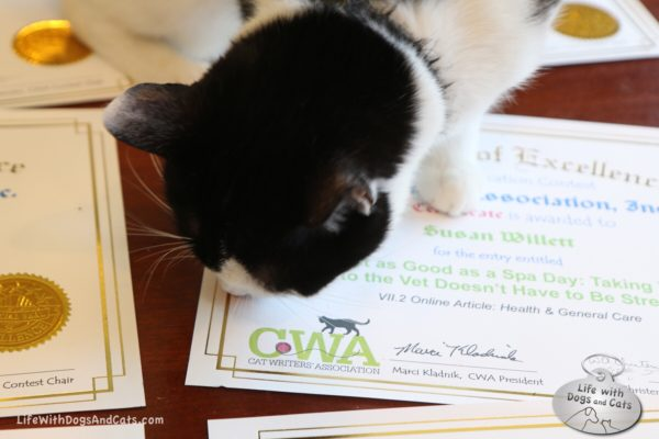 Elsa Clair reviews the CWA certificate for one of the stories about her..
