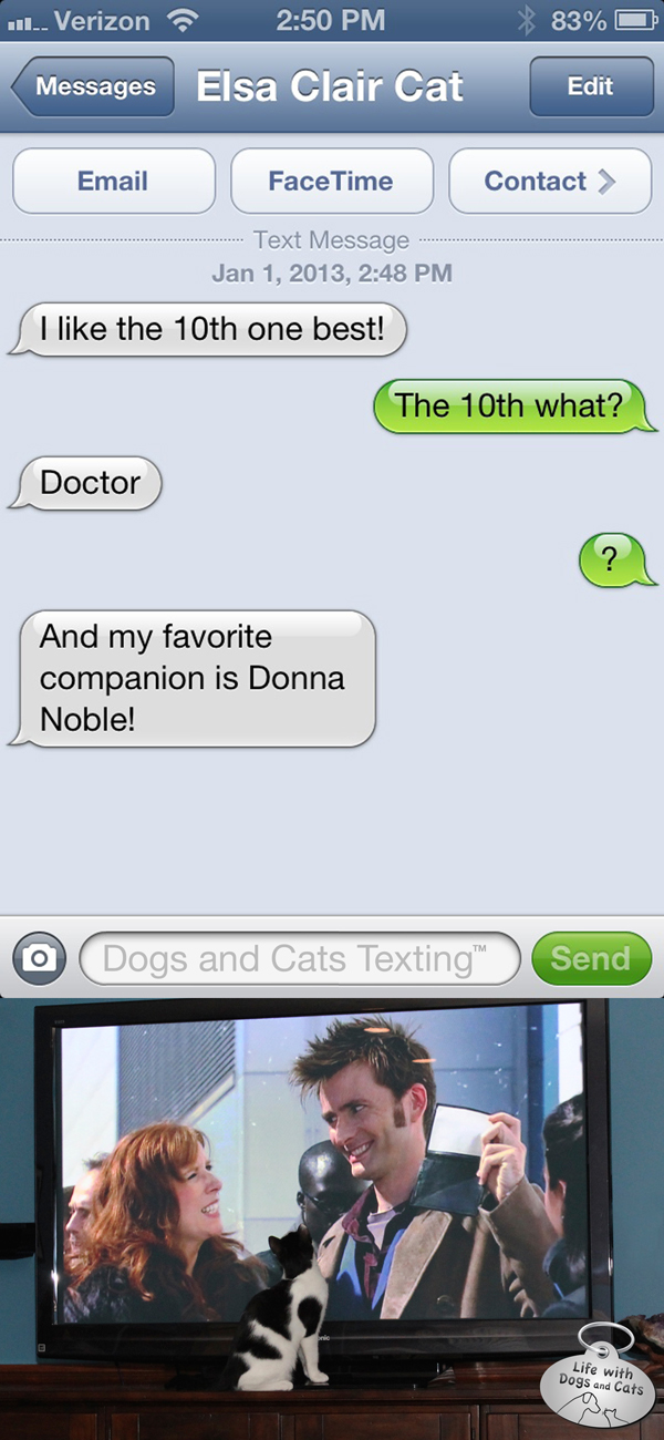 Text from Cat: I like the 10th doctor best.