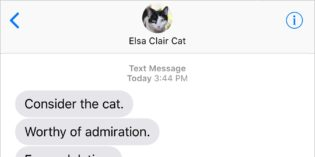 Text from Cat: A Work of Art