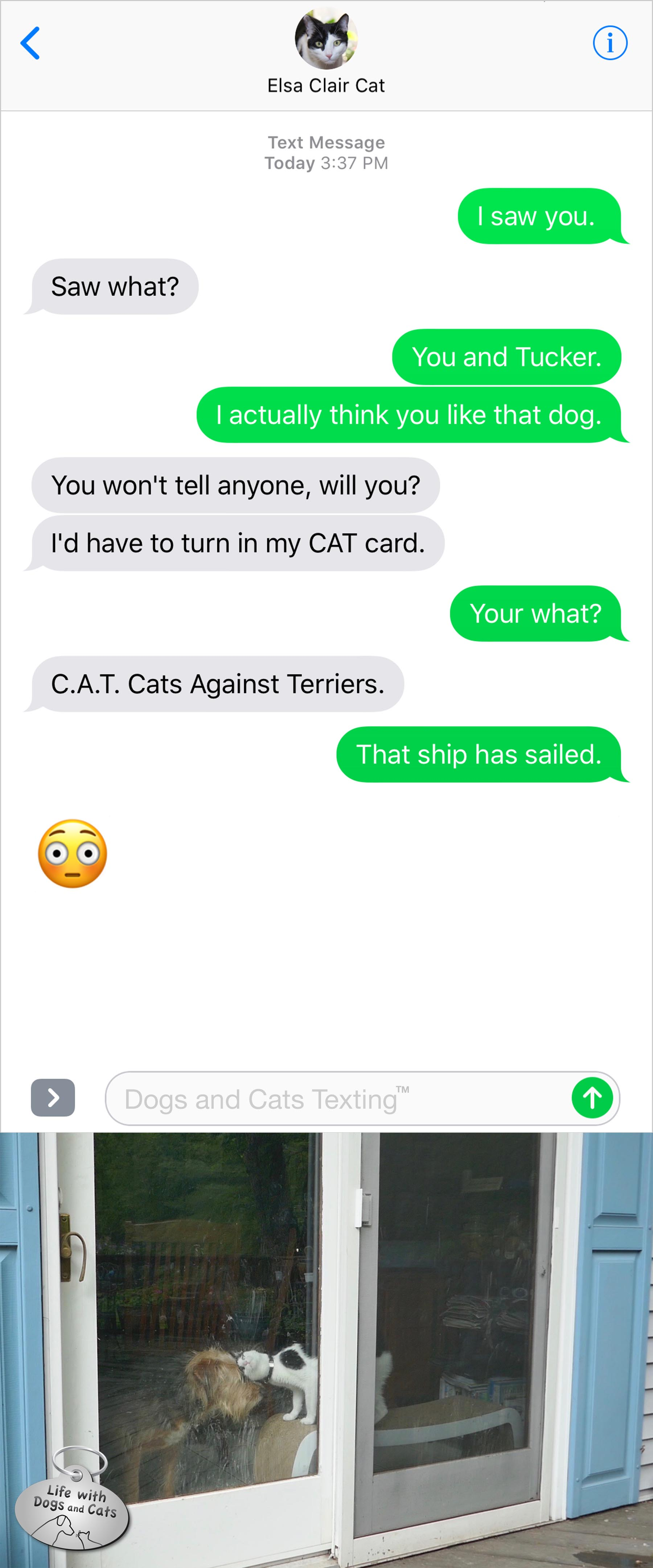 #TextFromCat Me: I saw you. Cat: Saw what? Me: You and Tucker. I actually think you like that dog. Cat: You won't tell anyone, will you? I'd have to turn in my CAT card. Me: Your what? Cat: C.A.T. Cats Against Terriers.