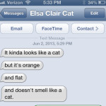 Text from cat: What's flat and orange and lives in a drawer?