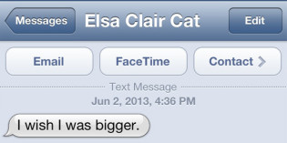 Text from cat: Reaching
