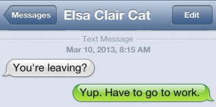 Text from Cat: Why are you leaving?