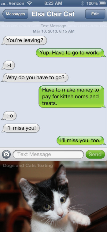 Text from Cat: Why do you have to go to work? Text from me: Have to pay for kitteh noms.