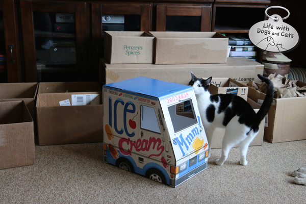 Elsa Clair checks out the ice cream truck box amidst all the boxes