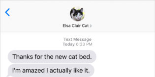 Text from Cat: Humans are weird