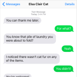 Text from Cat: You can thank me later