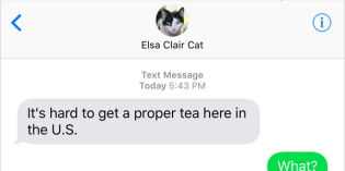 Text from Cat: OK UK