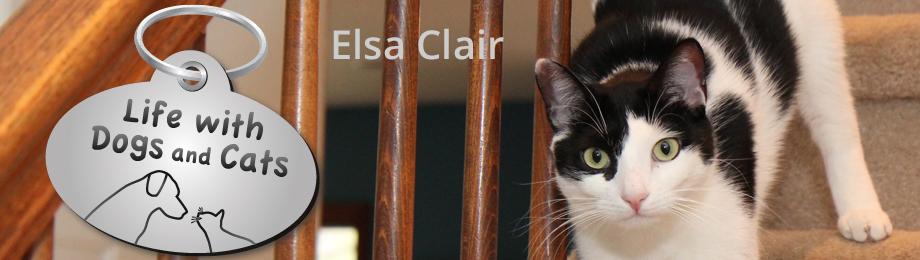 Elsa Clair