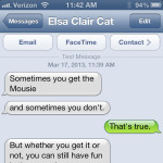 Text from cat: Perspective