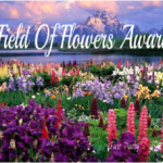 Story: Field of Flowers Award