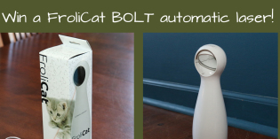 Technology and Pets: Your Chance to Win a FroliCat BOLT