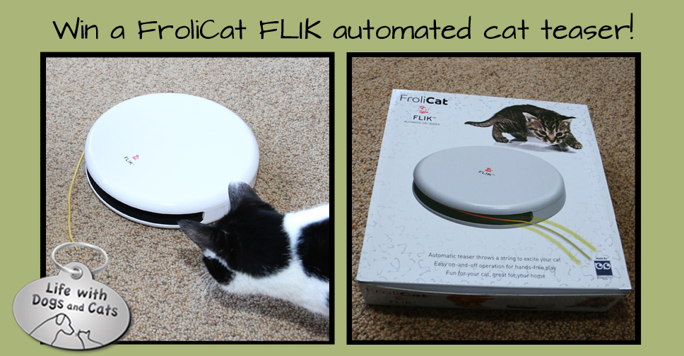 Enter to win a FroliCat FLIK Automatic Cat Teaser