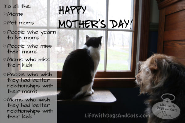 Happy Mother's Day to moms, pet moms, people who yearn to be moms, people who miss their moms, moms who miss their kids, people who wish they had better relationships with their moms, moms who wish they had better relationships with their kids.