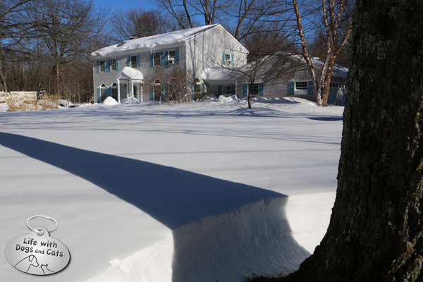 Our home, after the blizzard, before the dig out