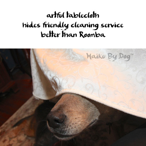artful tablecloth  hides friendly cleaning service better than Roomba