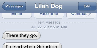 Text from Dog: They're gone