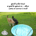 giant water bowl / or pool to splash in -- either / works in summer's heat #dog
