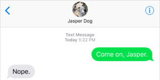 Text from Dog: Nope