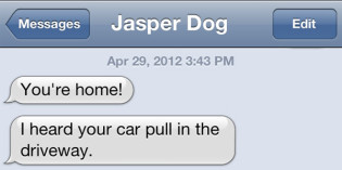 Text from Dog: You're Home!