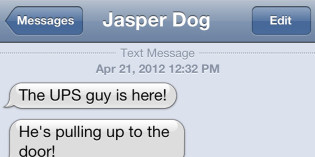Text from Dog: The UPS guy