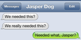 Text from Dog: Too many