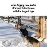 Haiku by Dog: Forging
