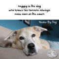 happy is the dog / who knows his humans always / make room on the couch #HaikuByDog