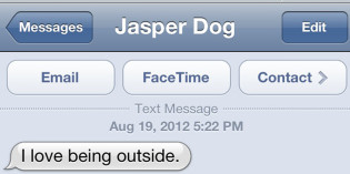 Text from Dog: It's good to be a dog