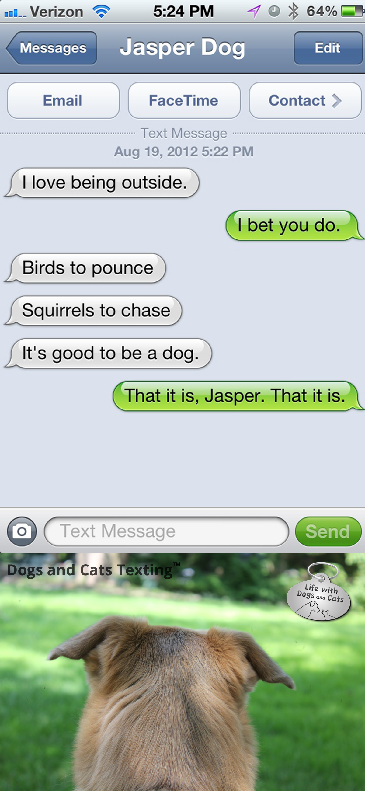 advice text from dog jasper s philosophy text from dog the ups guy