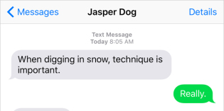 Text from Dog: Technique is important