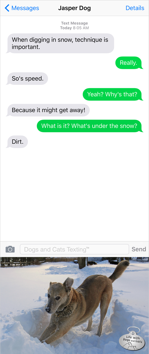 Text from Dog: Technique and speed are important when digging snow.