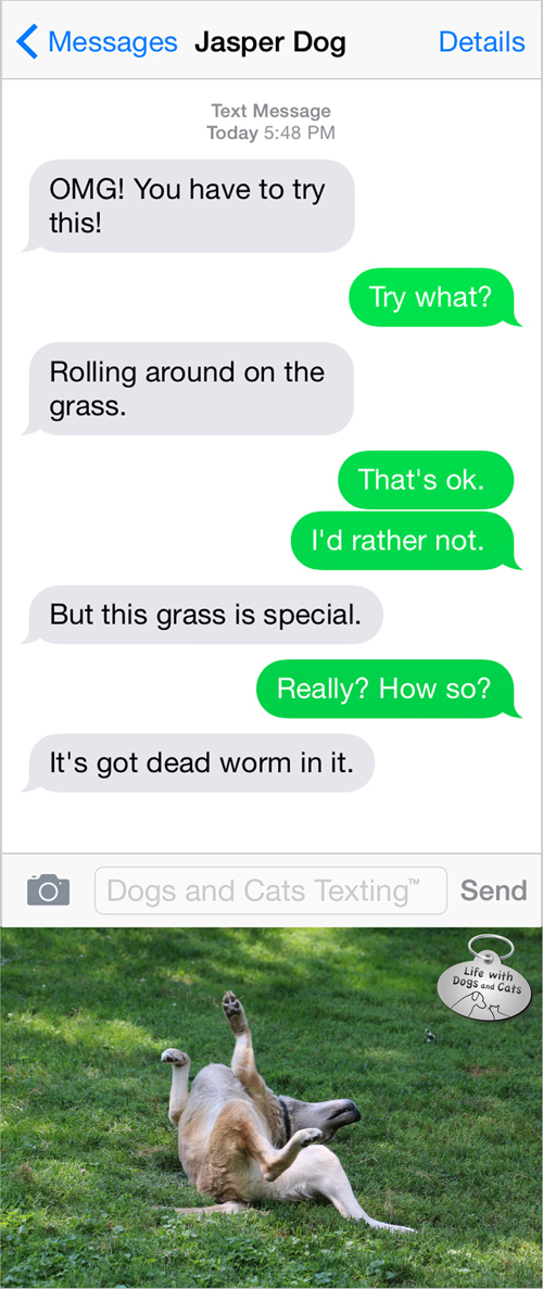 Text from Dog: You have to try rolling in this grass. It has dead worm in it.